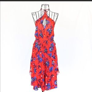 H&M Red and Blue Floral Dress